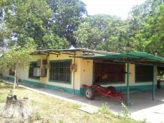 Municipio Tinaco, via El Pao estado Cojedes