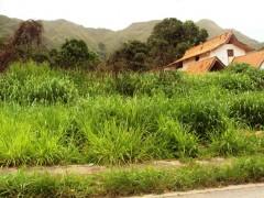 Venta de terreno en El Castaño Maracay