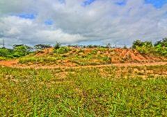Terreno en venta Tacarigua de Mamporal Edo. Miranda