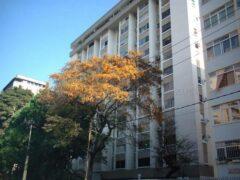 Apartamento en Alquiler en Los Palos Grandes,Caracas